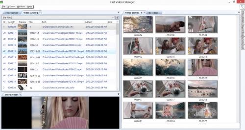 2013-02-13_Dockable_windows_show_off_Fastvideocataloger