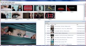 Fast Video Cataloger 1.5 displaying 3 windows reorganized