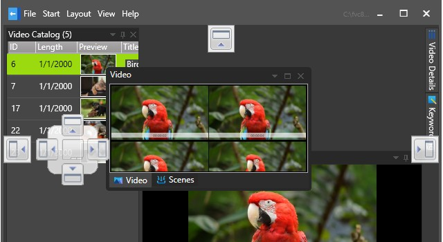 Fast video database software